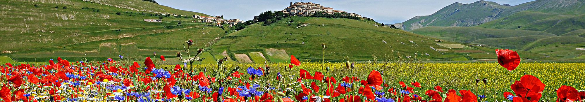 castelluccio umbria webcam live streaming